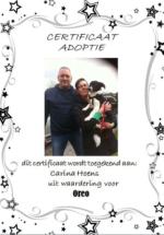 Adoptie-Oreo