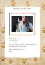 adoptie-jinckx