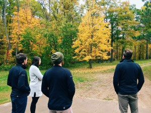 Design Team in Brainerd, MN