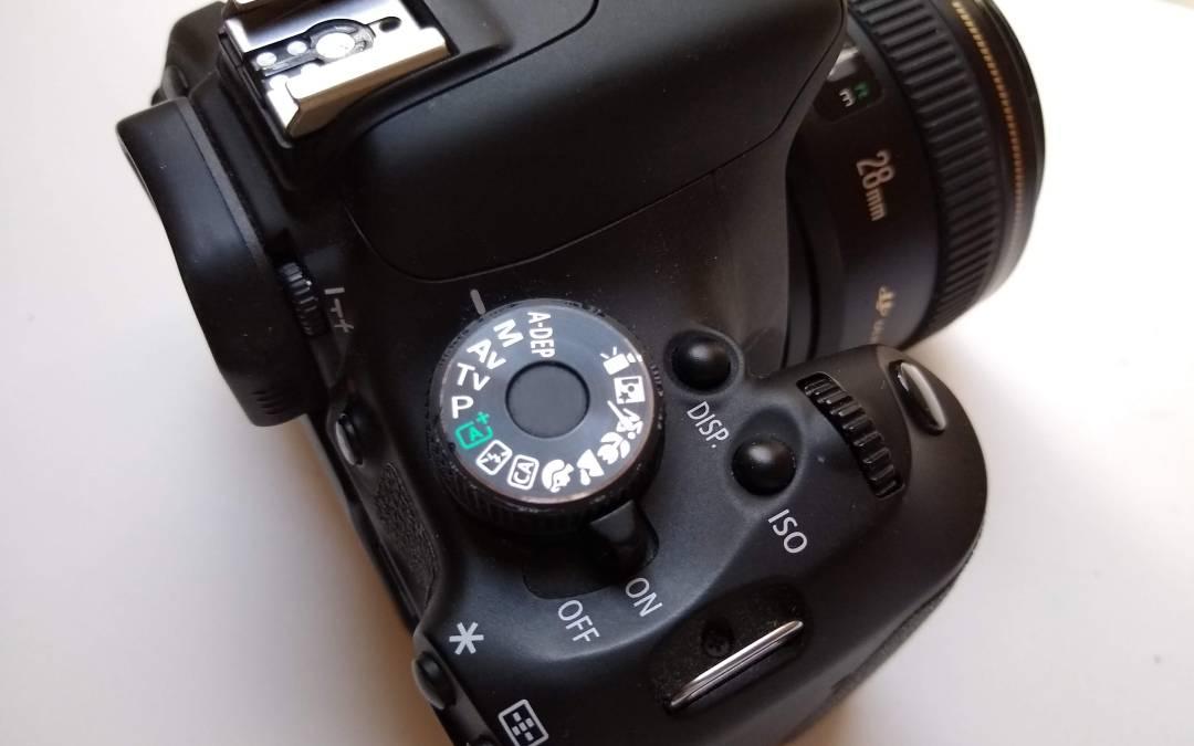 Tips for Better Photogrammetry Scans