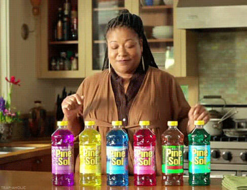 pine sol lady net worth