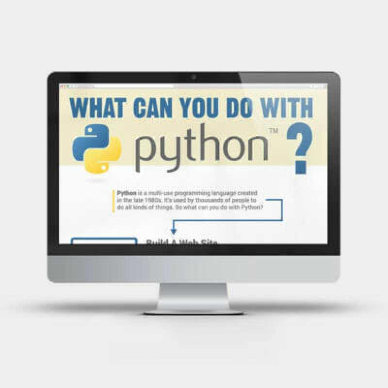 Python Infographic
