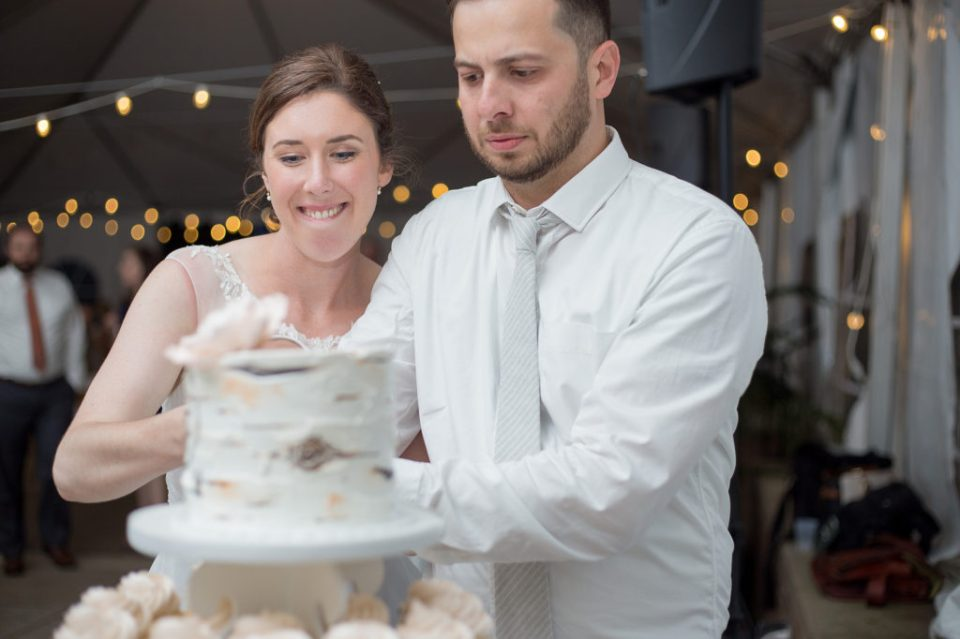 second photographer's view of bride and groom cuttting the cake at Pittsburgh National Aviary