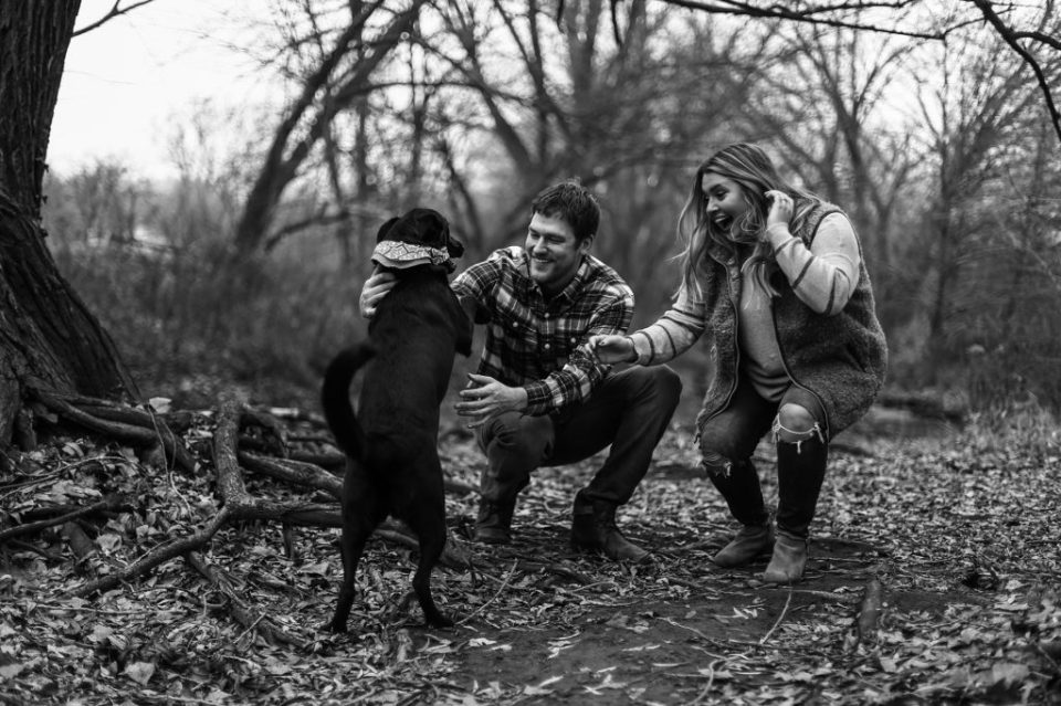 Erie, PA couple play with their black dog during fall engagement photos at Frontier Park