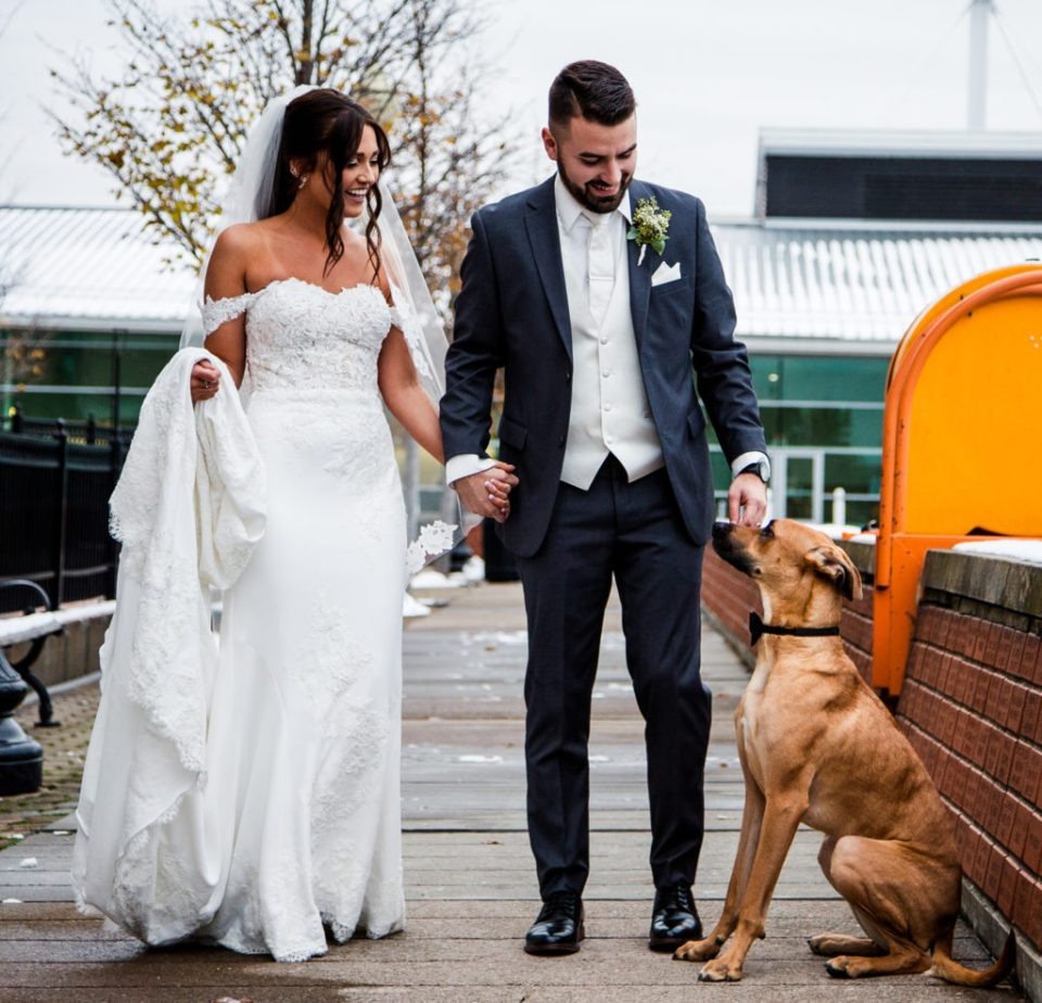 Bride and groom with their dog on Dobbin's Landing in downtown Erie, PA