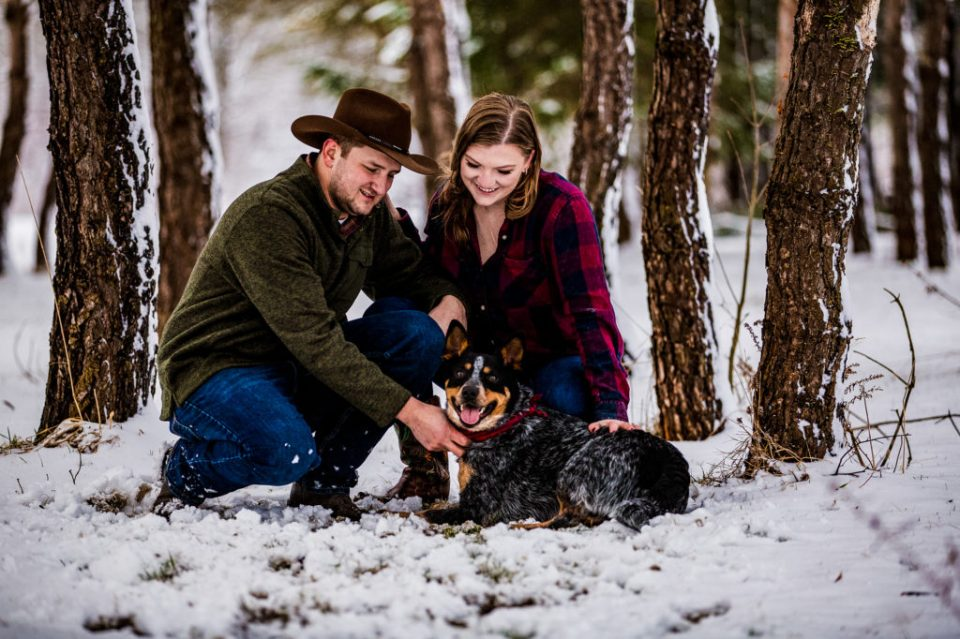 Couple plays with their dog in the woods during a winter engagement session in Waterford, PA