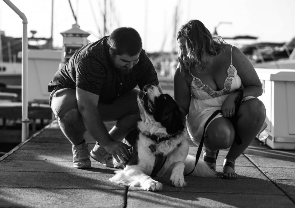 Engaged couple petting dog on a dock at the Erie Yacht Club
