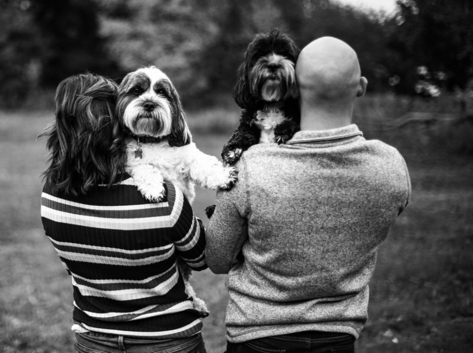 Man and woman holding their dogs for Lake Erie Community Park engagement photos