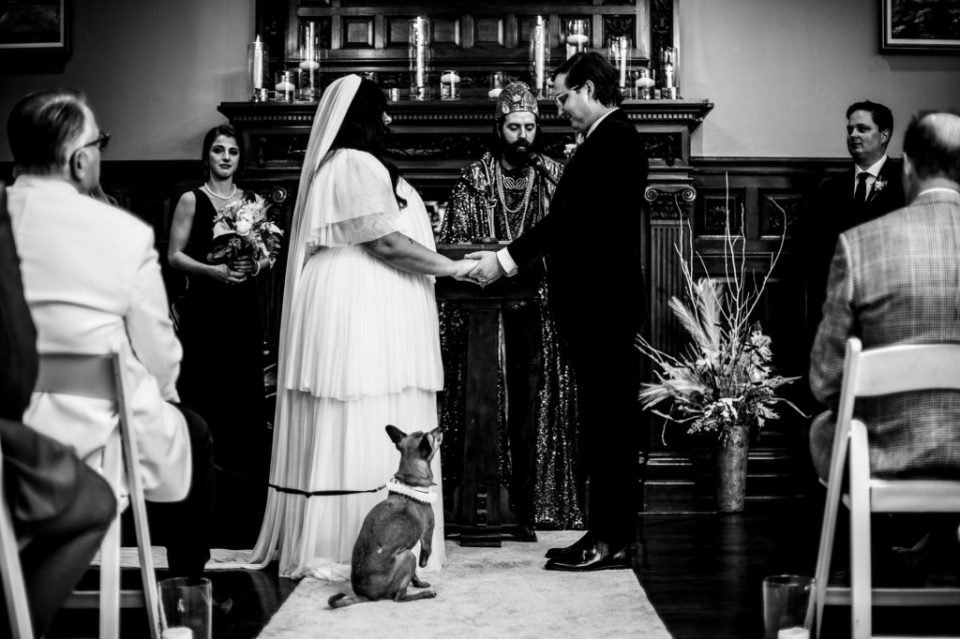 Leashed dog watches as his humans exchange vows at Peek'n Peak wedding in Clymer, NY