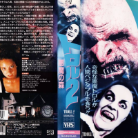 40 classic Japanese VHS covers