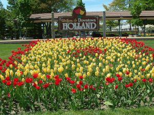 Holland Mattress Disposal