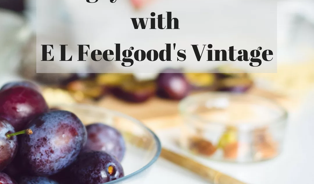 Hungry Savers Series with E L Feelgood's Vintage