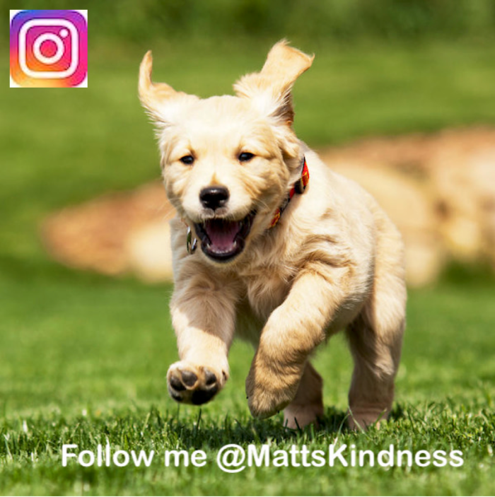 Matts Kindness on Instagram