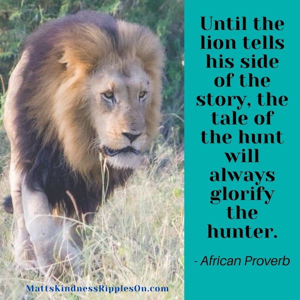 Lions Story