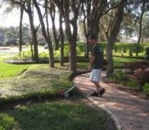 Orlando Back Yard Landscape Review