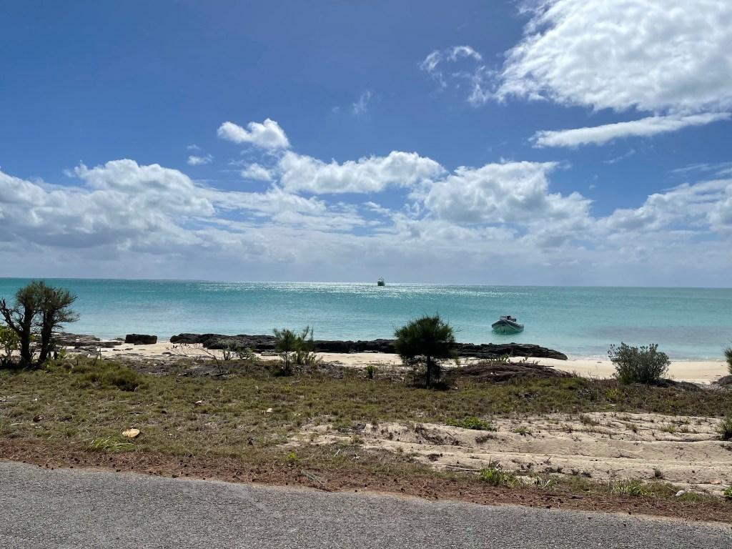 Cat Island View