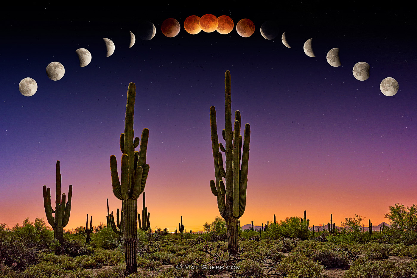 """Lunar Eclipse Blood Moon over Phoenix"""