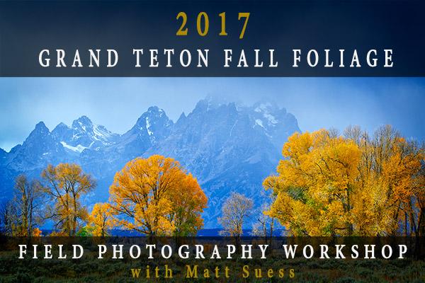 2017-Teton-Fall-ad-600x400-2