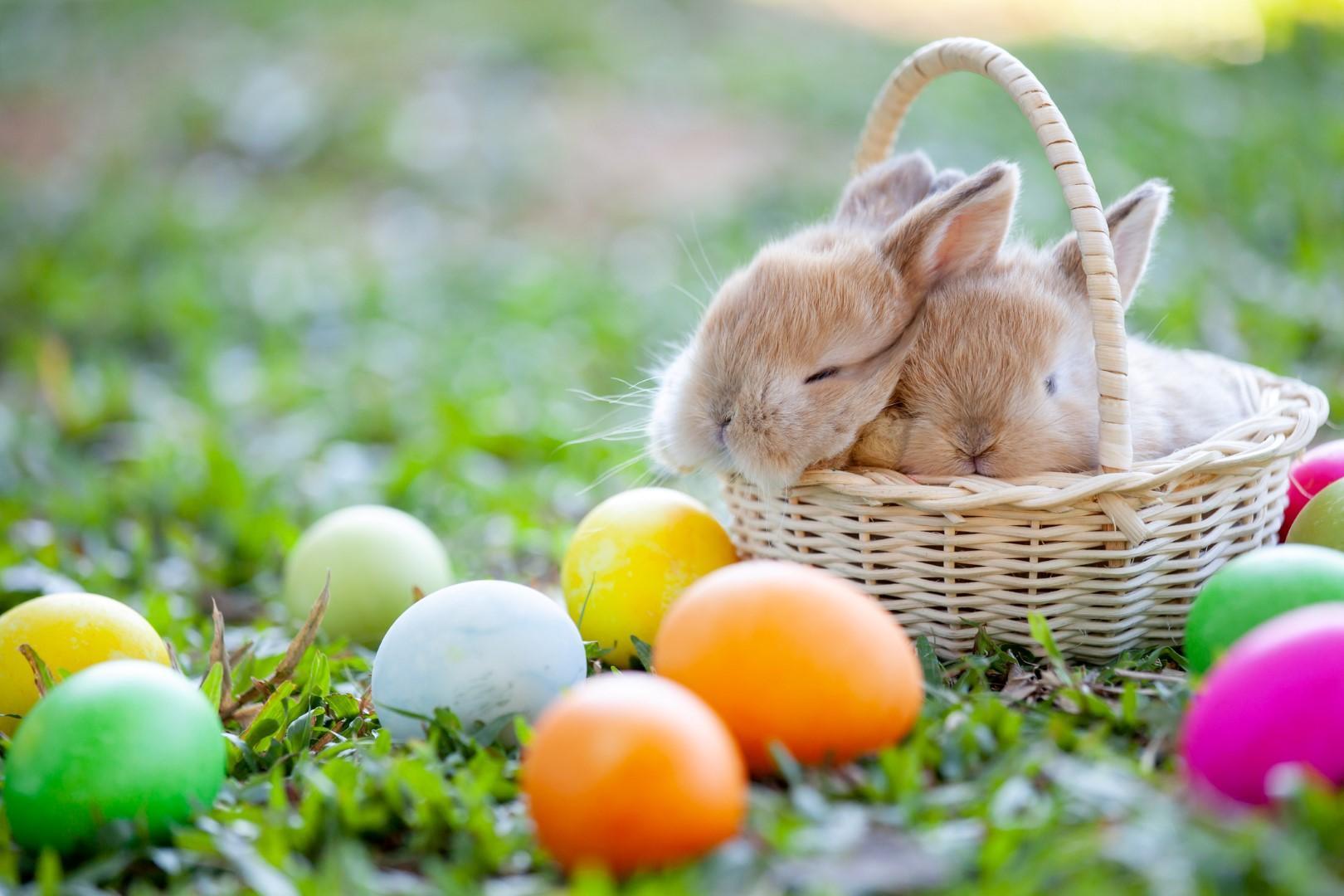 Ç'është Festa e Pashkëve? Kuptimi i vertete!