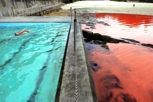 red and blue ocean marketing strategies