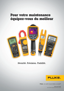 Fluke French Ad