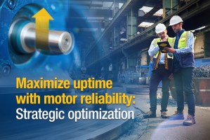 Motor Reliability Visual Theme Engineer