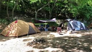 丸山県民サンビーチキャンプ場の林間サイト