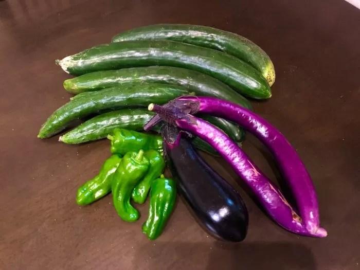 市民農園で野菜づくり