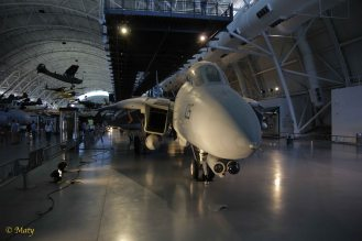Grumman F-14D(R) Tomcat from the nose
