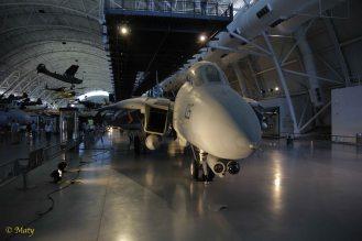Grumman F-14D(R) Tomcat from the nose