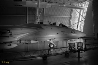 Grumman F-14D(R) Tomcat in black and white