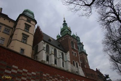 Wawel from outside the walls