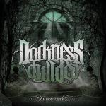 Darkness Divided_Chronicles
