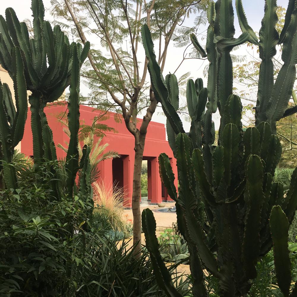 Le jardin secret marrakech maud interiors for Le jardin secret chicha