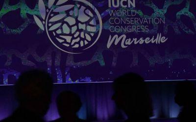 Biodiversidad: «Hay que hablar con todo el mundo, dar un vuelco a los modelos económicos» – Challenges