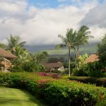 Maui Kamaole grounds