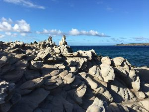 Dragons Teeth