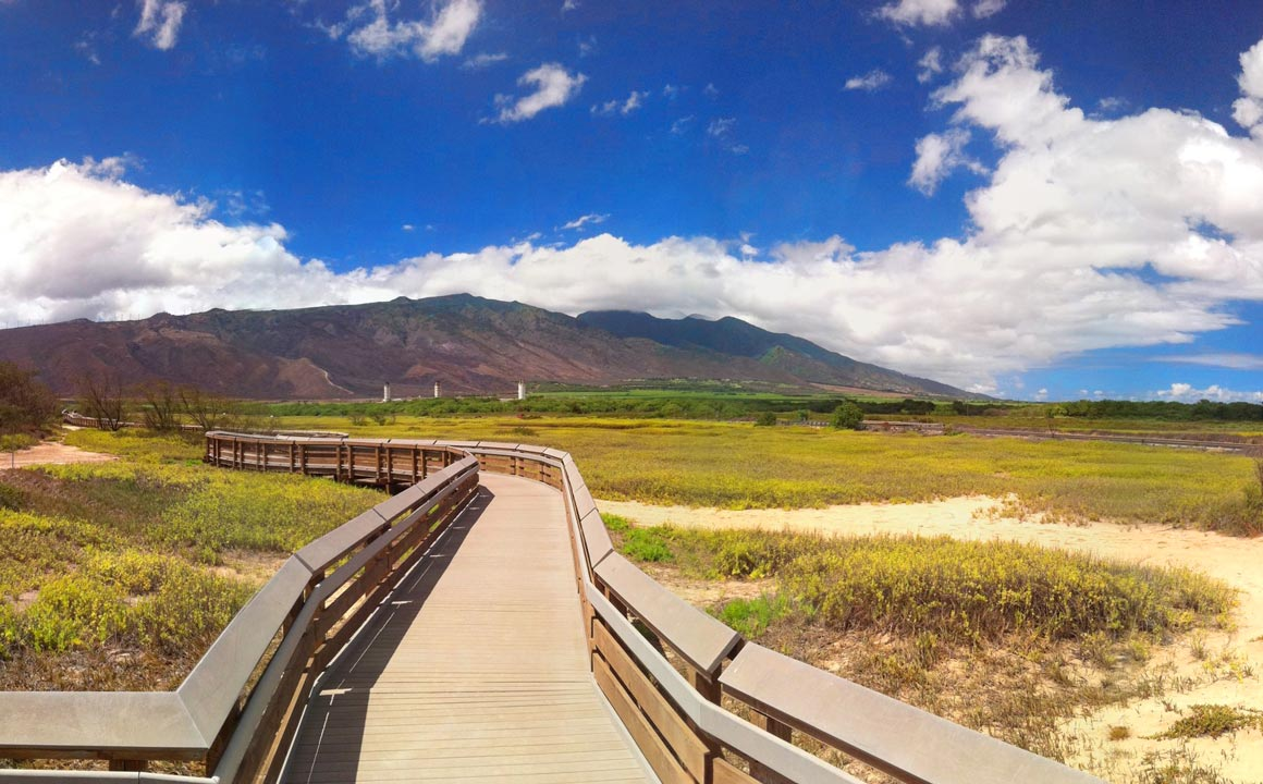 Kealea Pond Maui