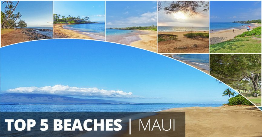 Family Friendly Maui Beach