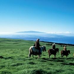 Makawao_Rodeo_Horseback
