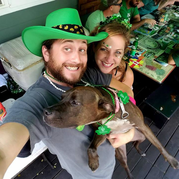 dog friendly happy hour kihei hi - st patricks day dog and duck