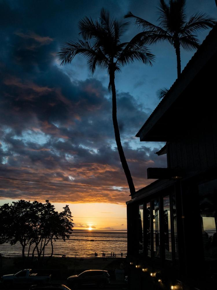 happy hour sunset at moose mcgillycuddys maui