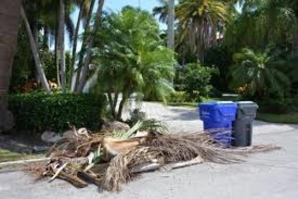 maui brush pile green waste disposal trash removal maui yard clean up