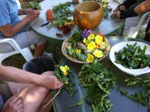 Lei-makers often share material between islands. Increasing concerns about transporting pests is beginning to hamper that practice. Photo courtesy of Maui Nui Botanical Garden.