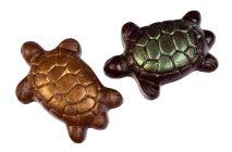 milk and dark chocolate turtles made on maui