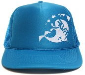 dolphin hat hawaii