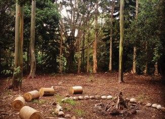 Maui activities camping