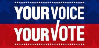 vote guide hawaii