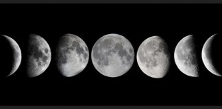 Harriet Witt moon