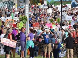 grassroots maui